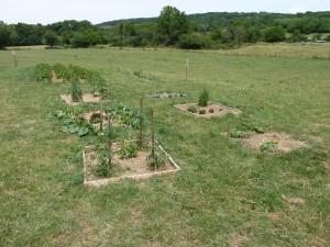 Ferme pédagogique : Le petit jardin en carrés